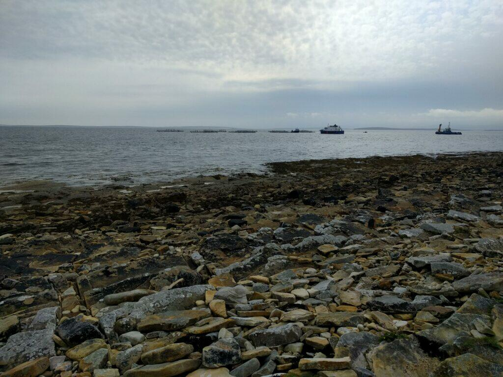 Shoreline near Orphir and fish farm offshore
